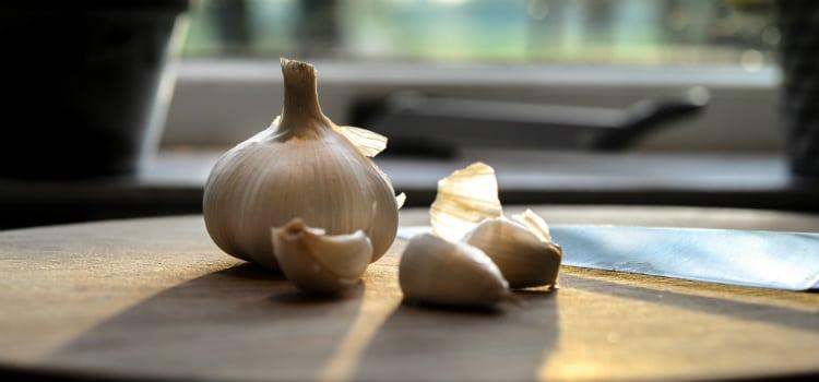 benefícios do alho e como comer