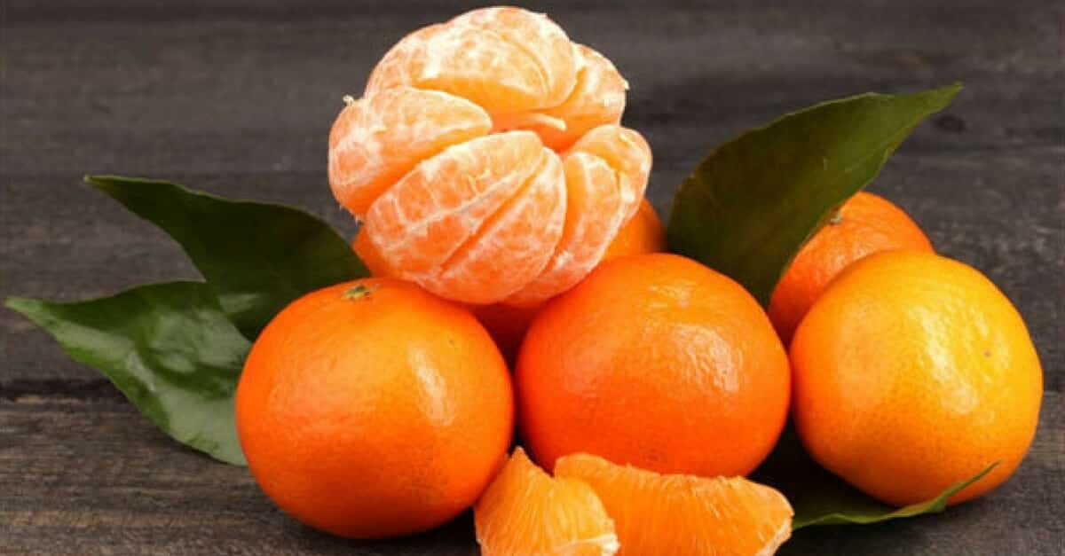 14 benef cios da tangerina - Mandarina home online ...