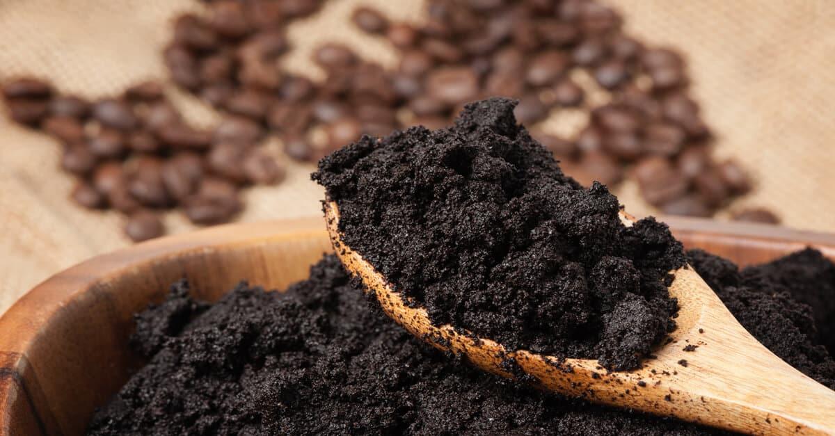 Resultado de imagem para tratamento com borra de café