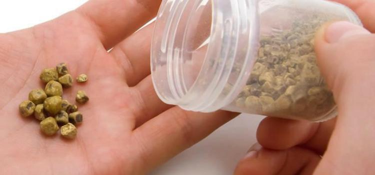 como eliminar pedra na vesícula
