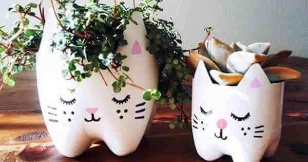 gatinho-garrafa-pet-vaso-plantas