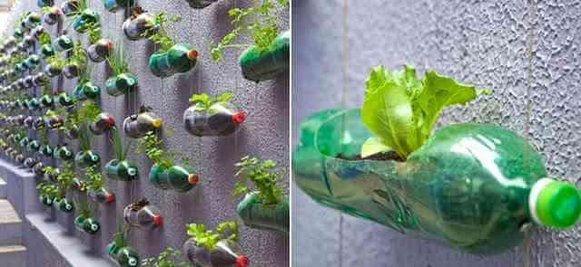jardim-garrafa-pet-horta